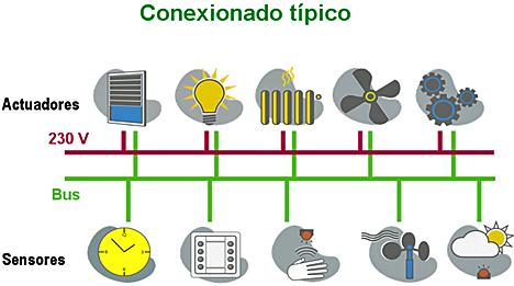 conexionadotipico